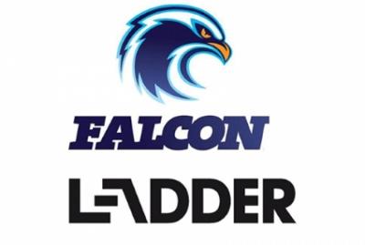 Falcon Ladders